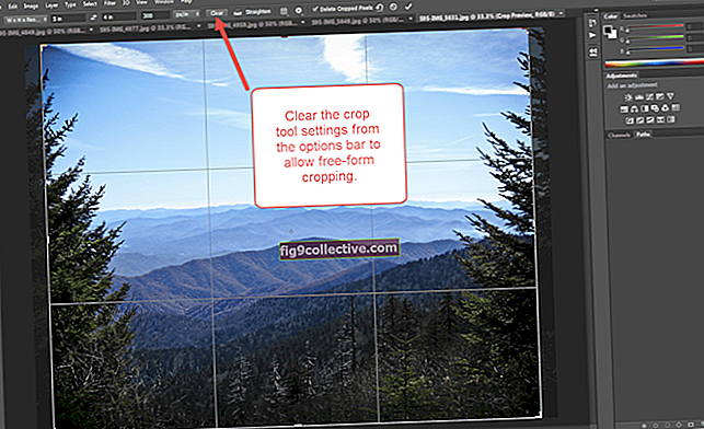 Come ritagliare una forma irregolare in Photoshop